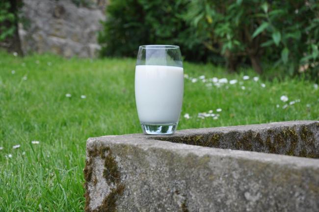 Il controllo di gestione nell'allevamento di vacche da latte: un caso pratico di successo
